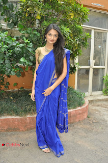 Nikitha Narayan Pictures in Blue Saree at National Silk Expo ~ Celebs Next