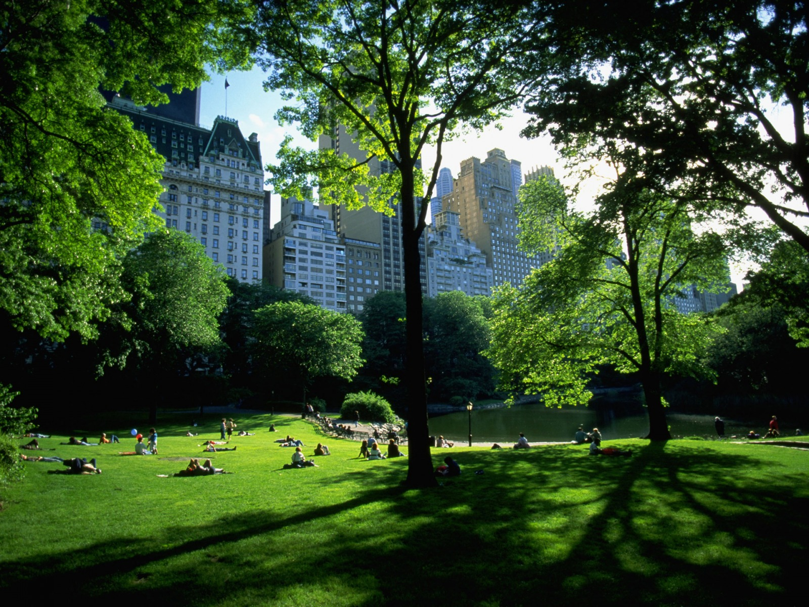 Imelda mcconnell central park background for Central park wallpaper