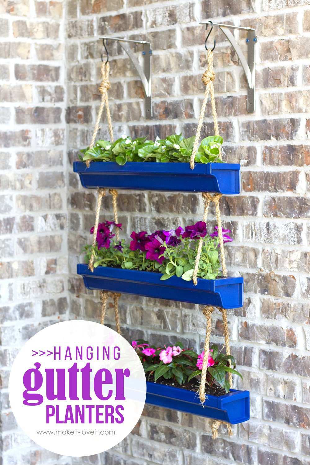 Musings by candace jean my plan for increasing our curb for Rain gutter planter box