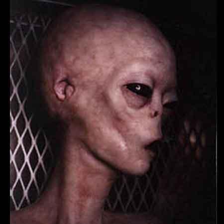 alien-virus