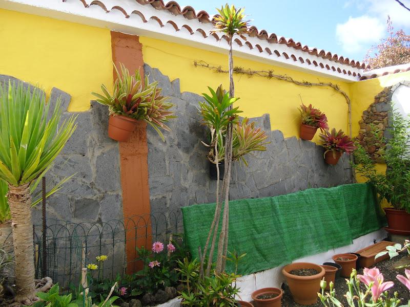 Pinturas vidrieras naturaleza y flores los muros de mi - Muros de jardin ...