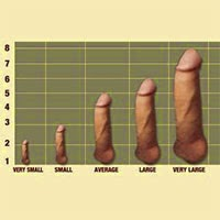 Average African Penis Size 52