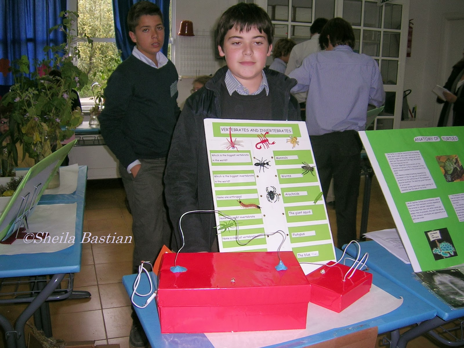 Science Magazine SCIENCE FAIR PROJECT ELECTRICITY GAMES By