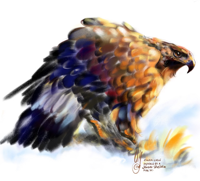 Golden eagle a bord painting by Artmagenta