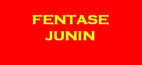 FENTASE JUNIN