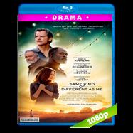 Uno tan diferente como yo (2017) BRRip 1080p Audio Dual Latino-Ingles
