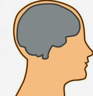 http://ahealthybargain.myshaklee.com/us/en/shop/healthysolutions/brain/product-_p_mindworks_p_