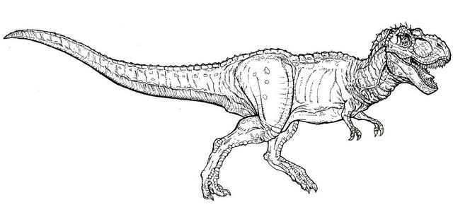 Jurassic World Indominous Rex Coloring