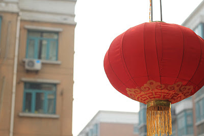 chinese new year latern