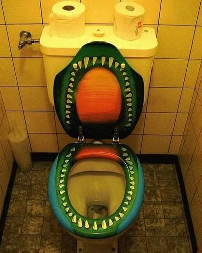 Toilet Wc Gaul Love In Life