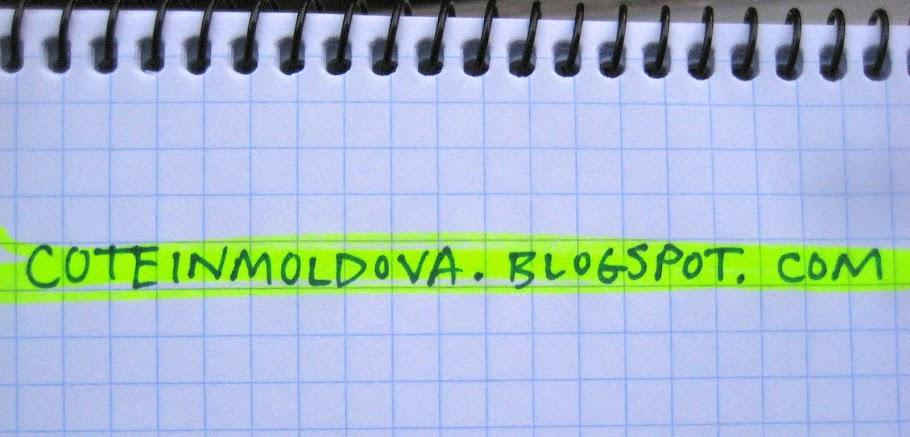 coteinmoldova.blogspot.com