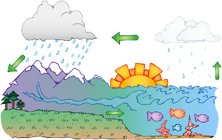 Water Cycle With Labels For Kids 74614 | SITWEB