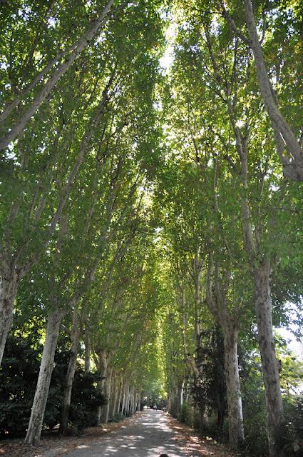 MADRID CON NIÑOS: Los Jardines del Moro