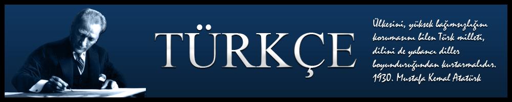 Türkçe Düşündüklerim: Türkiye Güncesi