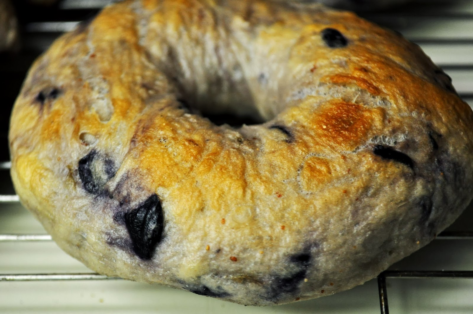 New York Style Blueberry Bagels DIY | The Grateful Girl Cooks! Blueberry Bagel