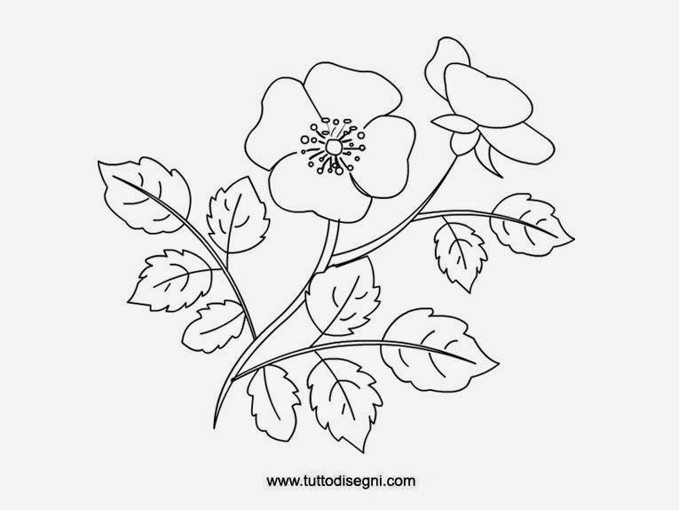 Immagini di fiori da colorare for Fiori grandi da colorare