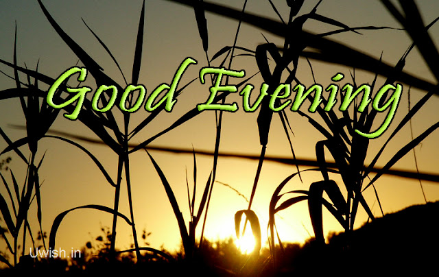 Good evening greetings e cards and Wishes with sunset