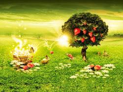 ❤ Vivo Persiguiendo un sueño