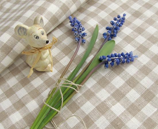 Muscari, цветы, фото