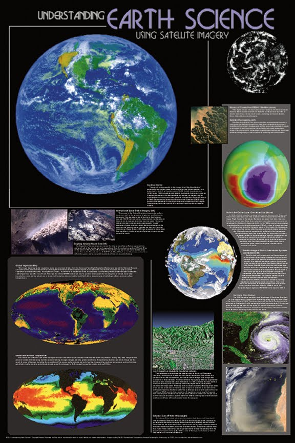 how life form on earth did