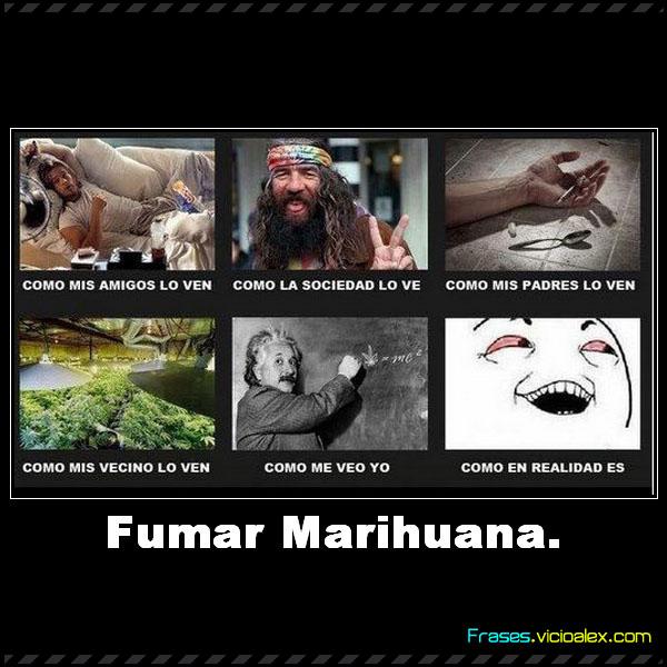 Imagenes Con Frases De La Marihuana