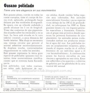 Fichas Safari Club, características de el Gusano políclado