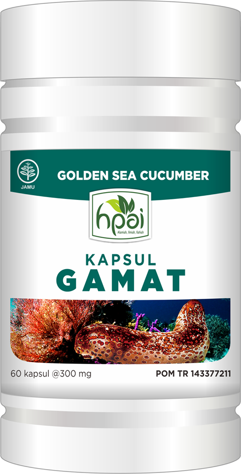stokist ekstrak kapsul gamat emas hpai teripang laut