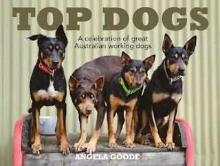 Book-club-top-dogs-Angela-Goode