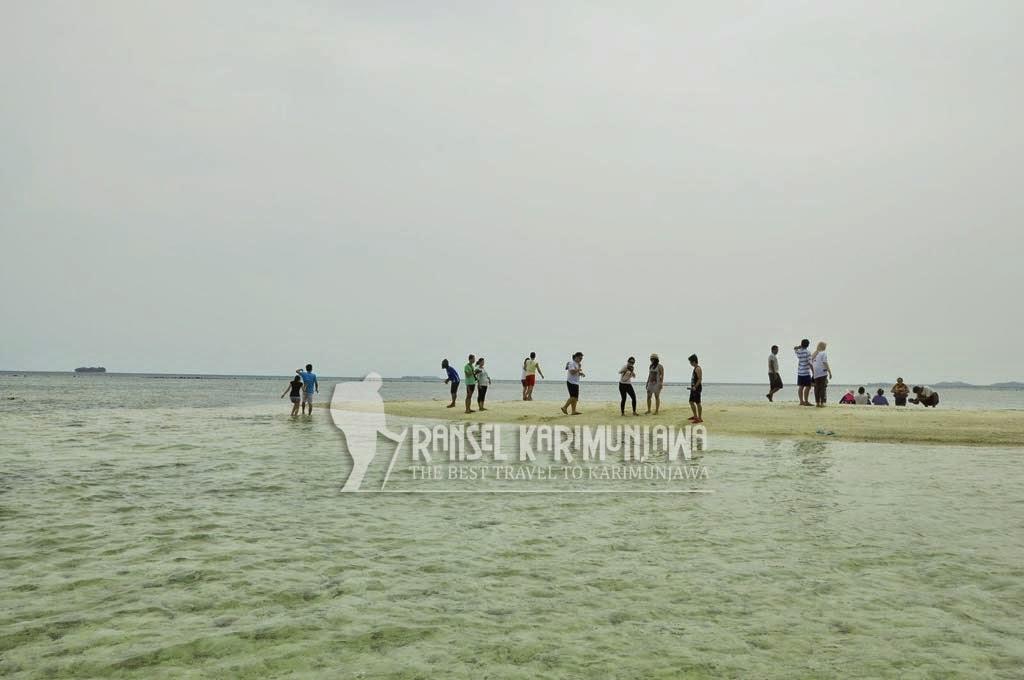 gosong island karimunjawa