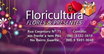 FLORICULTURA   FLORES & PRESENTES