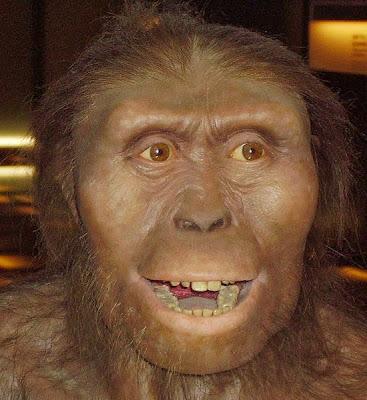 Teoria da Evolução e a Bíblia....