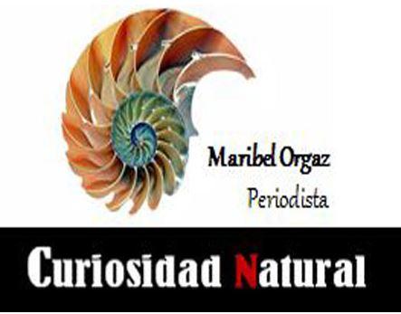 Curiosidad Natural