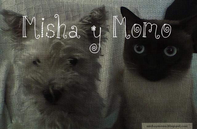 Misha y Momo