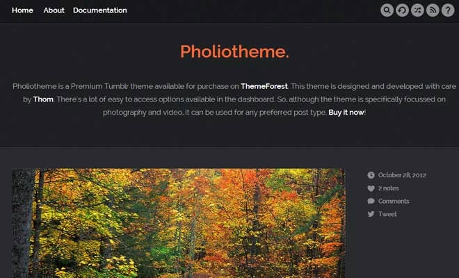Pholiotheme — A Premium Theme for Tumblr