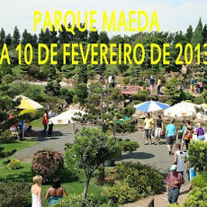 PARQUE MAEDA- IT