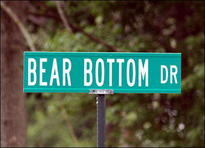 bear+bottom.jpg