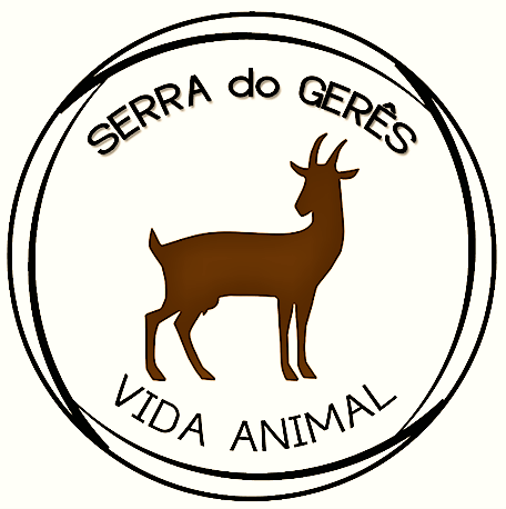 "Serra do Gerês ""Vida Animal"""