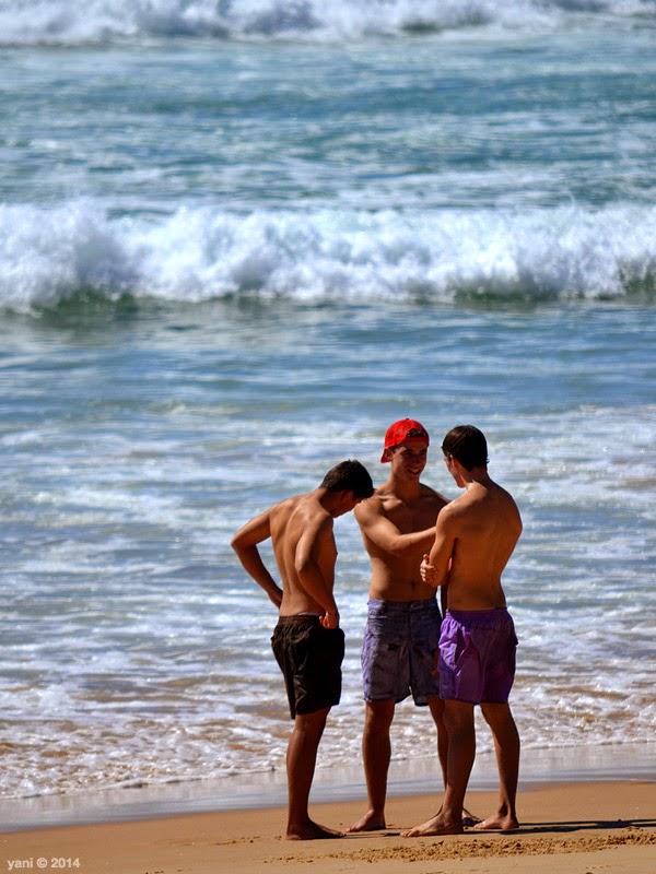 beach boy trio