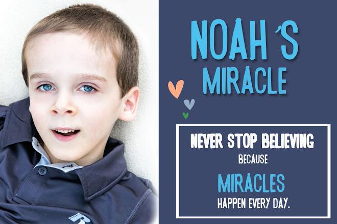 Noah's Miracle
