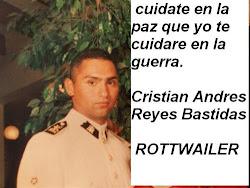 EL FOTOLOG DEL MARICON CHILENO CRISTIAN ANDRES REYES BASTIDAS (ALIAS MATACHOLOS CON EL POTO)
