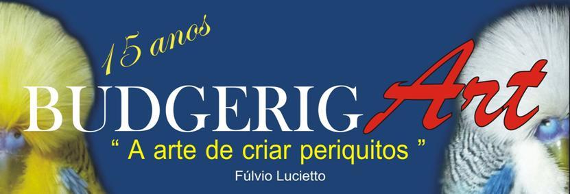 BudgerigART - Aves Disponíveis ( maiores detalhes pelo e-mail pllucietto@yahoo.com.br )