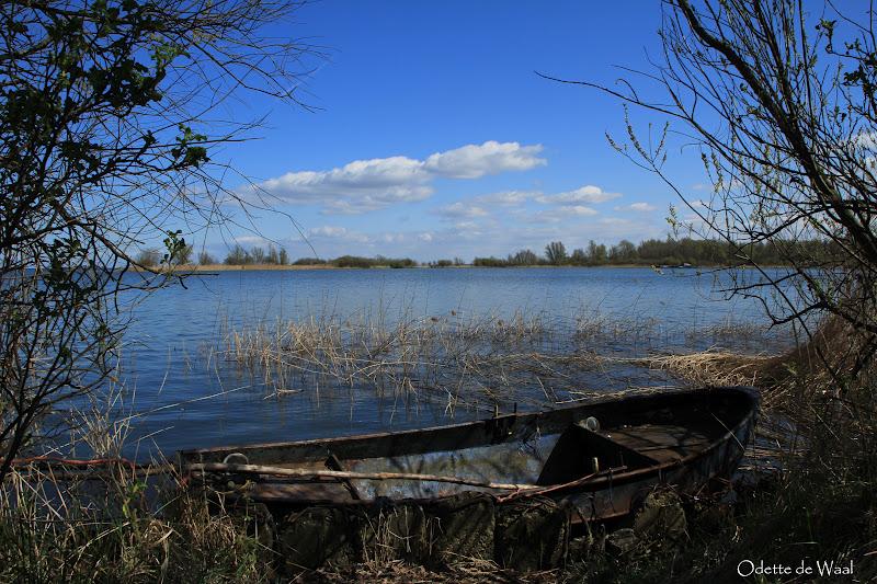 natuur rond amsterdam