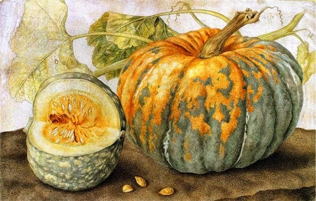 Giovanna+Garzoni+(Italian+Baroque+Era+Painter,+1600-1670)+Still+life+with+a+melon.jpg