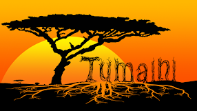 Tumaini Volunteers