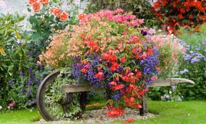 Garden Decoration Ideas on Really  Then What Happened   Making Resolutions  Lists And English