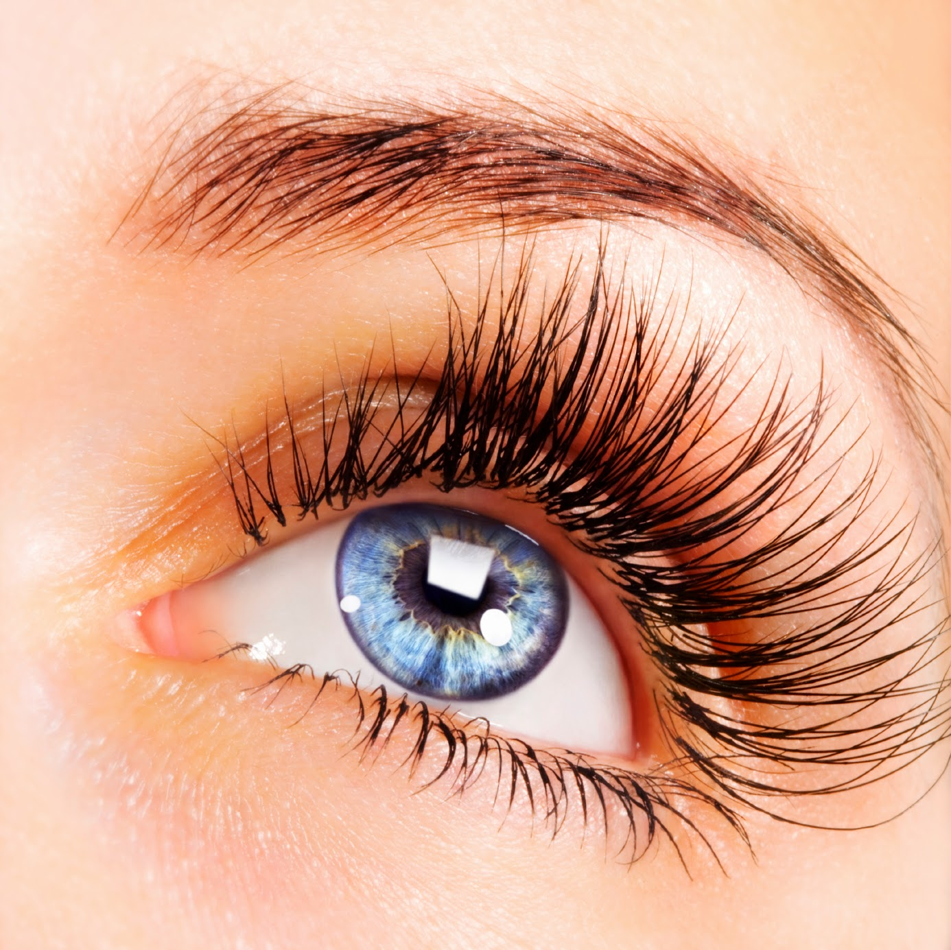 Lash Perfect Eyelash Extensions At Head To Toe Oxford Head To Toe