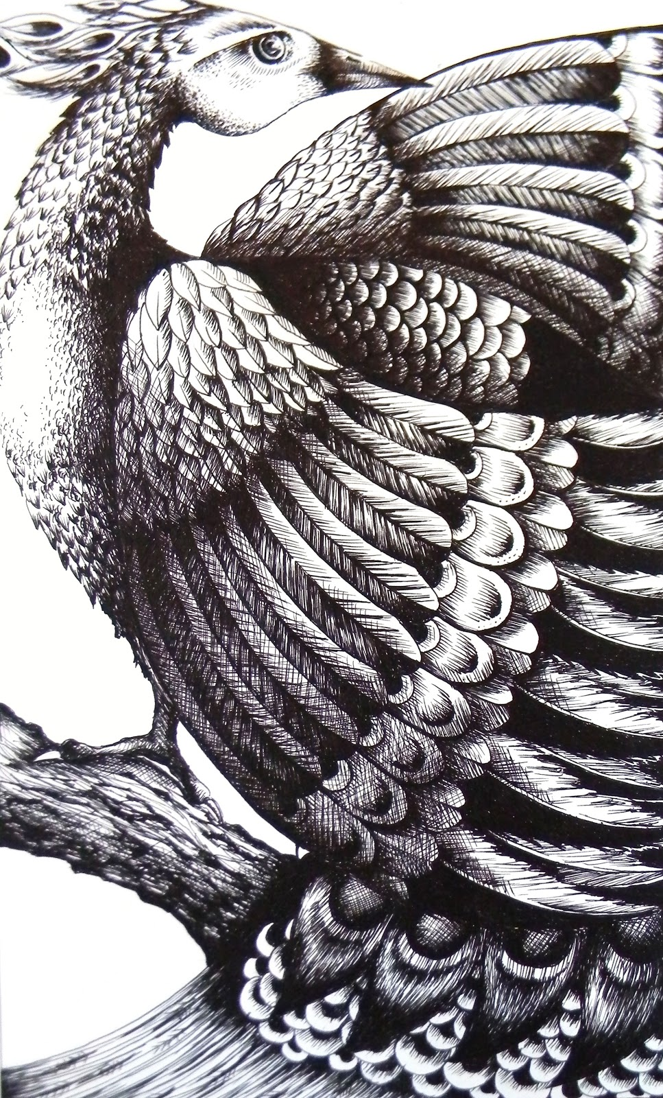 Pen And Ink Illustrations : Mangle prints pen and ink drawing