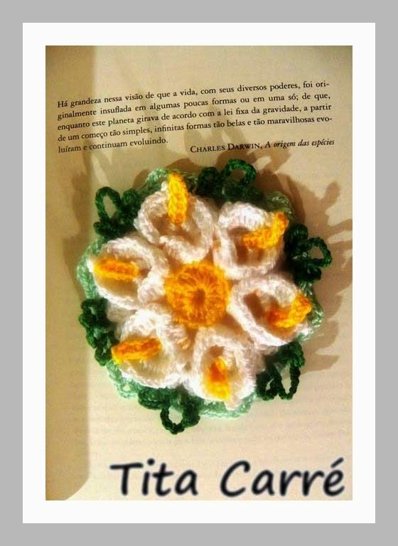 Flor Copo de Leite e a Origem das espécies de Darwin