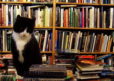como organizar libros en el librero