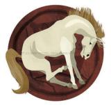 zodiac chinezesc cal